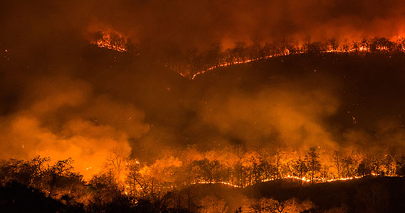 Wildfires  | Photo Credit: iStock-531043714 | Copyright: mack2happy