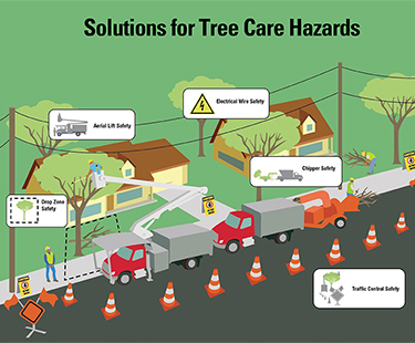 Solutions for Tree Care Hazards