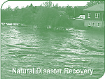 Natural Disaster Recovery: Flood Cleanup