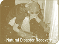 Natural Disaster Recovery - Fungi