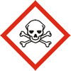 Skull & Crossbones Pictogram