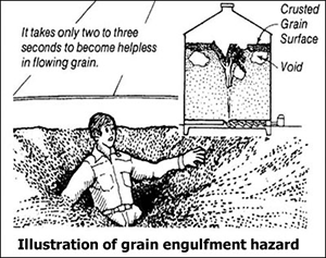 It takes only two to three seconds to become helpless in flowing grain. Crusted grain surface. Void. Illustration of grain engulfment hazard.