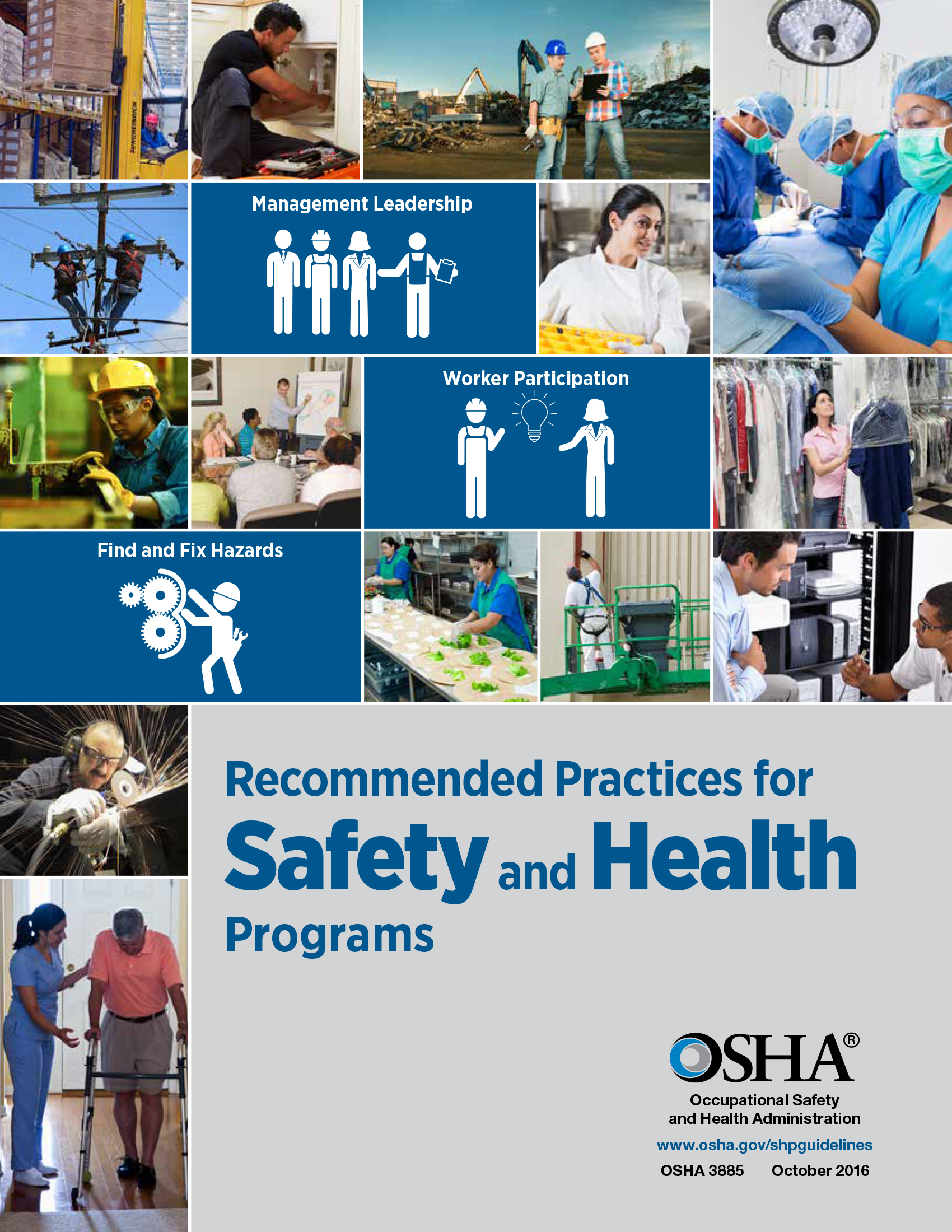 Recommended Practices for Safety and health Programs