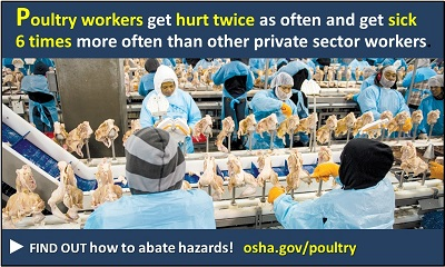 Poultry workers get hurt twice as often and get sick 6 times more often than other private sector workers. Find out how to abate hazards! osha.gov/pou