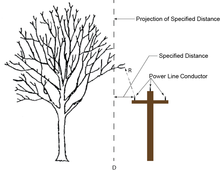 The tree is within the specified distance if any part of the tree is on the side of that vertical projection closest to the line or equipment (D) without regard to the radial distance from the line or equipment (R). (See 29 CFR 1910.269(a)(1)(i)(E) for information about the applicability of 1910.269 to line-clearance tree trimming.